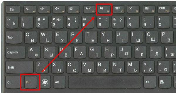Сочетание Fn + F6 в Lenovo